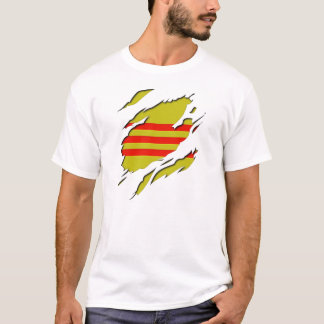 South Vietnam Flag Torn Shirt Effect