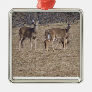 South Woodstock Deer Metal Ornament