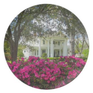 Southern Antebellum Home - Brookhaven, Mississippi Dinner Plate