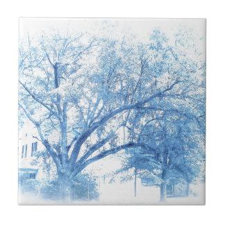 Southern Blue Oak Toile Tile