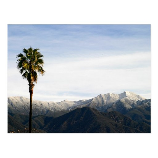 Southern California Snow Postcard