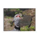 Southern Crested Screamer 1 Cover For iPad Mini