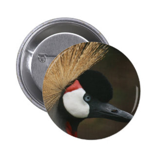 Southern Crowned Crane Button
