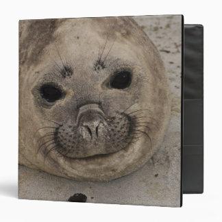 Southern Elephant Seal Mirounga leonina) 3 3 Ring Binder