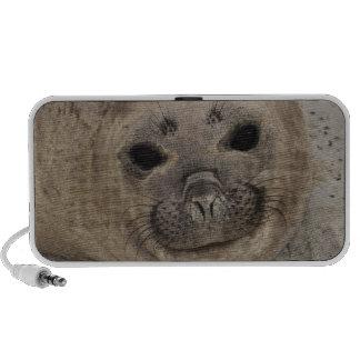 Southern Elephant Seal Mirounga leonina) 3 Portable Speaker