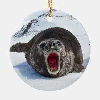 Southern Elephant Seal Mirounga Leonina Ceramic Ornament