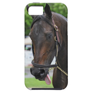 """Southern Equine Stables """"Open Water"""" iPhone 5 Cases"""