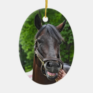 Southern Equine Stables Open Water Ceramic Ornament