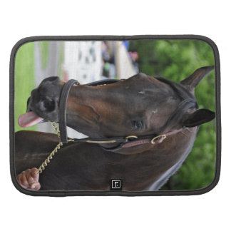 Southern Equine Stables Planner