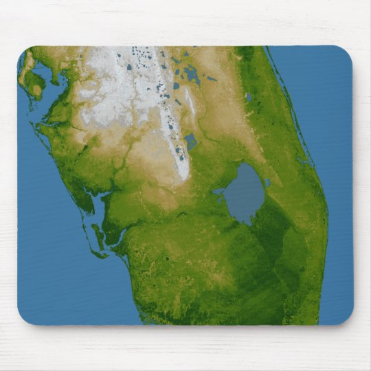 Southern Florida Mouse Pad