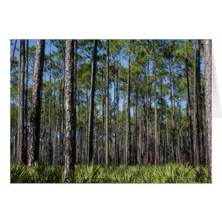 Southern Forest Card