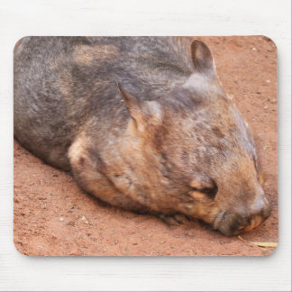 Southern Hairy-Nosed Wombat Mouse Pad