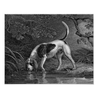 Southern Hound Dog Illustration Poster