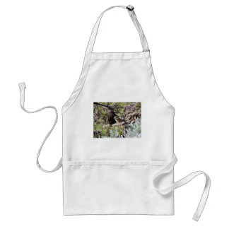 Southern Idaho Ground Squirrel Adult Apron