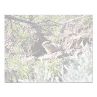 Southern Idaho Ground Squirrel Personalized Invitations