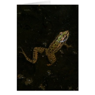 Southern Leopard Frog Greeting Card. Card