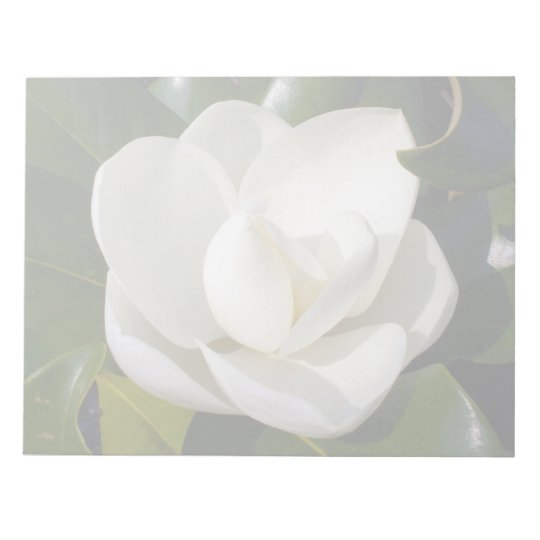 Southern Magnolia Bloom Notepad