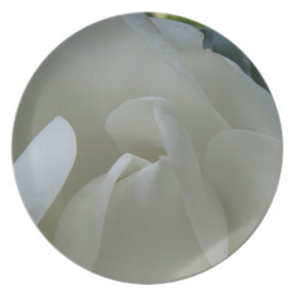 Southern Magnolia Blossom Closeup Plate
