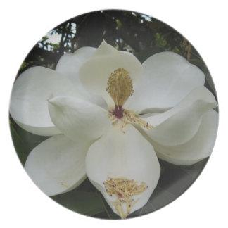 Southern Magnolia Blossom Decorative Plate