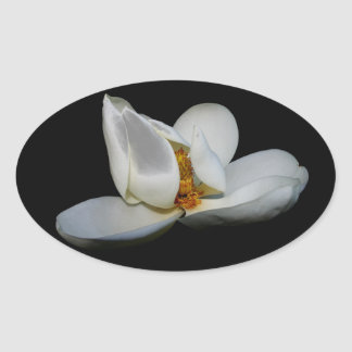 southern magnolia center stage oval sticker