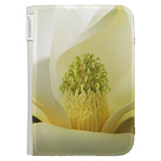 Southern Magnolia Kindle Cover
