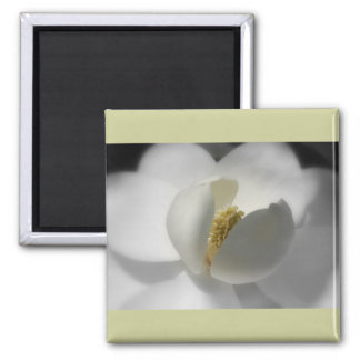 Southern Magnolia Magnet