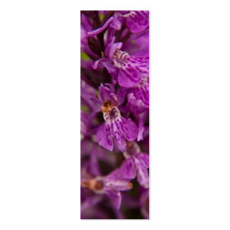 Southern Marsh Orchid Profile Card Business Cards