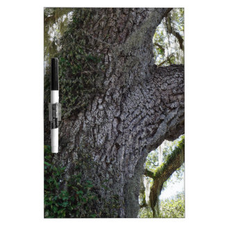 Southern Oak 2 Dry Erase Board
