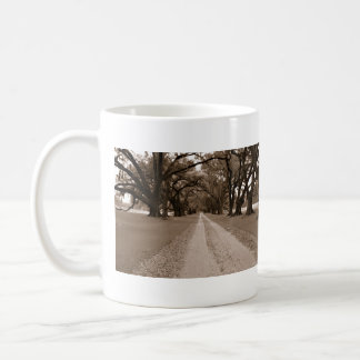Southern Oak lined drive. Classic White Coffee Mug