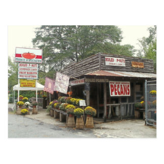 Southern roadside country store postcard