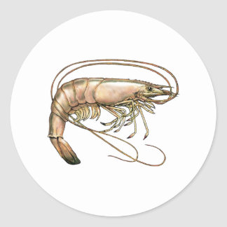 Southern Shrimp Art Classic Round Sticker