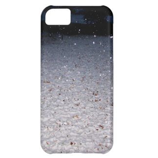 Southern Snow Case For iPhone 5C