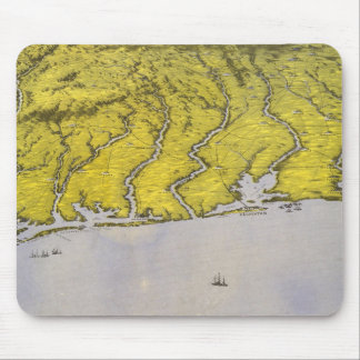 Southern Texas Mouse Pad