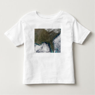 Southern United States of America Toddler T-shirt