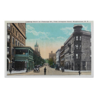 Southern View of Chenango St from Arlington Poster