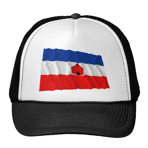 Southern Waving Flag Hat