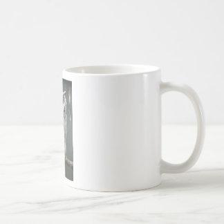 Southern White Faced Owl Classic White Coffee Mug