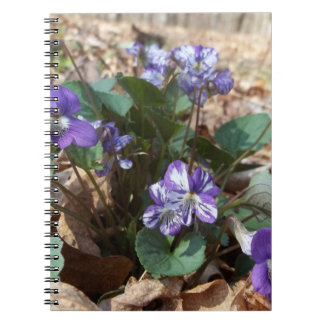 Southern Wood Violet Note Book