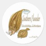 southernflounderspecies pegatina redonda
