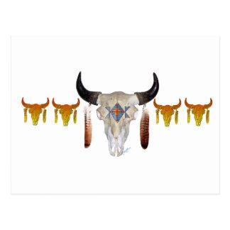 Southwest Buffalo Skull Postcard