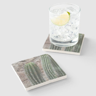 Southwest Cactus Photograph Cacti Desert Plants Stone Beverage Coaster