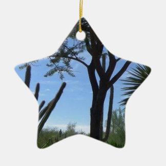 Southwest Ceramic Ornament