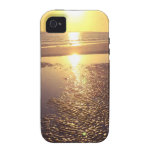 Southwest Florida Sunset iPhone 4/4S Cover