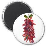 Southwest Mistletoe Fridge Magnets