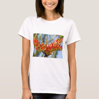 Southwest Ocotillo Bloom T-Shirt