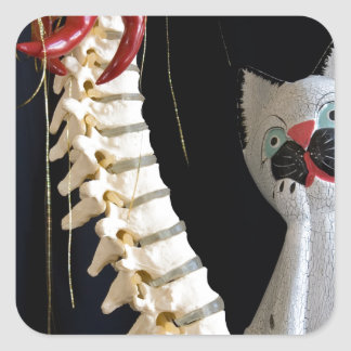Southwest Spine Skeleton Chili Pepper Cat Square Sticker