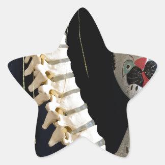 Southwest Spine Skeleton Chili Pepper Cat Star Sticker