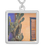 Southwestern Cactus (Opuntia dejecta) and Necklace