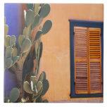 Southwestern Cactus (Opuntia dejecta) and Tile