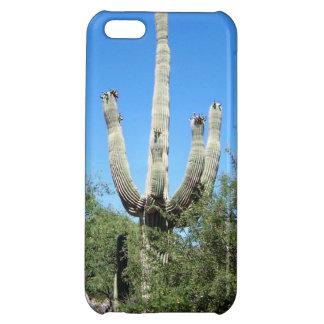 Southwestern Desert Saguaro Cactus Case For iPhone 5C